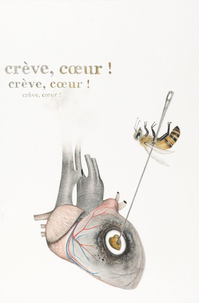 LMG-Creve-coeur